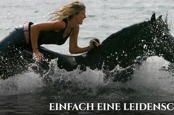 Katja Schnabel - Mut zur Freiheit am Boden und im Sattel -KS ganzheitliches Pferdetraining